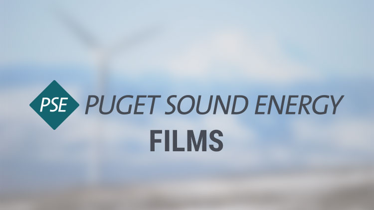PSE | Puget Sound Energy | How to Turn Off Your Electricity