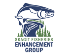 Skagit Fisheries