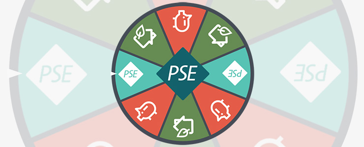 PSE's Energy Efficiency wheel