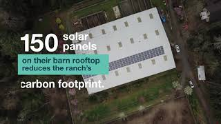 On Bainbridge Island, Solar is Helping Run the Ranch